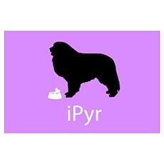 iPyr Poster