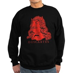 Decartes Evil Demon Sweatshirt (dark)