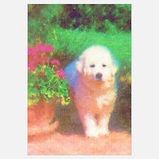 Summer Puppy