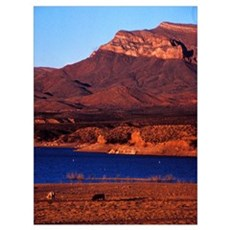 Late light, Caballo Lake, NM 1995 Canvas Art