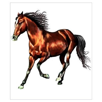Cantering Bay Horse Poster
