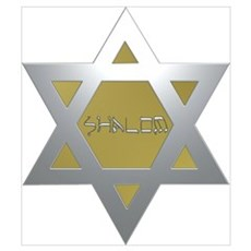 Silver and Gold Jewish Star Framed Print
