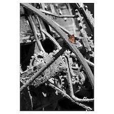 Butterfly on Rust