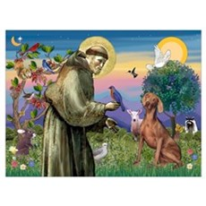 St. Francis & Weimaraner Poster