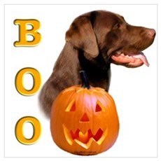 Halloween Chocolate Lab Boo Poster