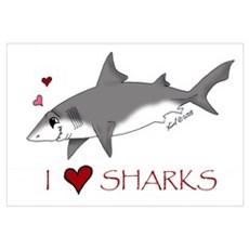 I love sharks Poster