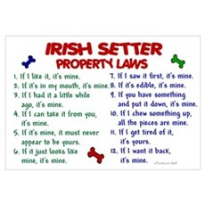 Irish Setter Property Laws 2 Canvas Art