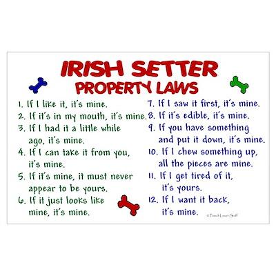 Irish Setter Property Laws 2 Poster
