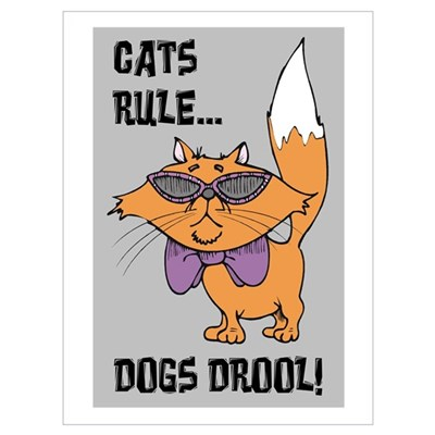 cats rule dogs drool design Poster