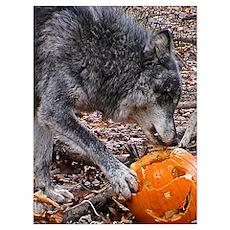 Nira's Halloween Poster