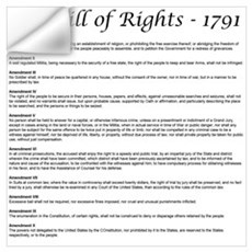 Bill of Rights 2 Wall Decal