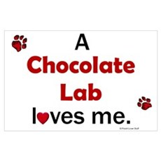 Chocolate Lab Loves Me Poster
