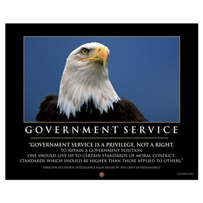 Government Service 16x20 Framed Print