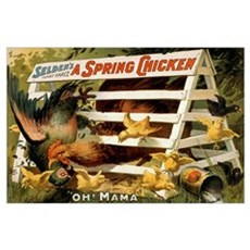 SPRING CHICK 11x17 Poster