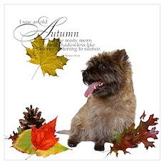 Autumn Cairn Terrier Poster
