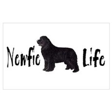 Newfie Life Poster