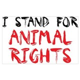 Animal rights Posters