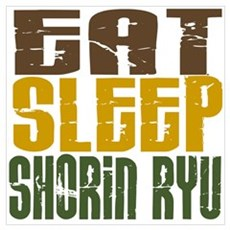 Eat Sleep Shorin Ryu Poster