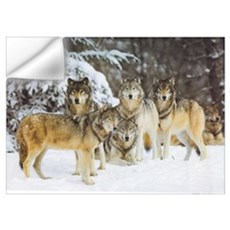 """Wolf Pack"" 9x12 Wall Decal"