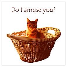 Amusing Cat Poster