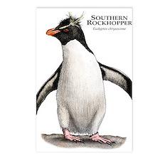 Southern Rockhopper Penguin Postcards (Package of