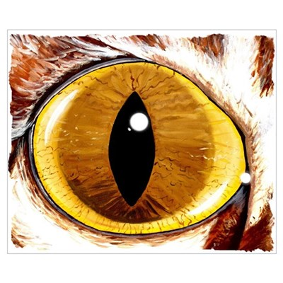 Painted Cat's Eye Poster