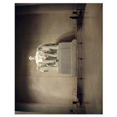 Lincoln Memorial Admirer 11x14 Poster