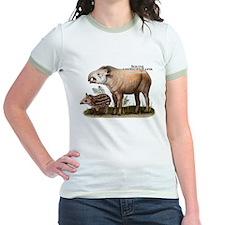 South American Tapir T