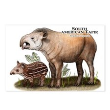 South American Tapir Postcards (Package of 8)