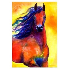 Arabian horse Print Canvas Art