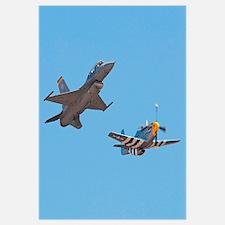 Tomcat fighter jet Wall Art
