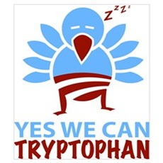 Yes We Can Tryptophan Poster