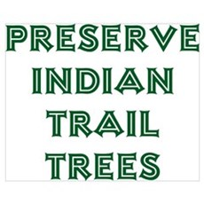 Trail Trees Poster