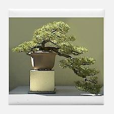 Bonsai Garden Tile Coaster