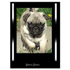 Proud Pug Canvas Art