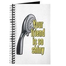 Your Friend Is So Shiny 40 Year Old Virgin Journal