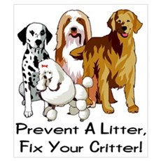 Prevent A Litter Poster