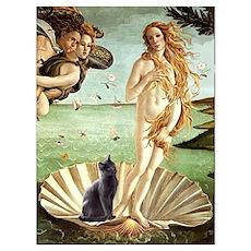 Venus /Russian Blue Poster