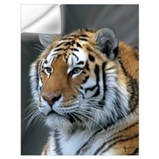 Portrait of a Tiger Wall Decal