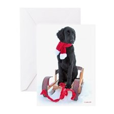 Flat-coated Retriever Christmas Cards (Pack of 20)