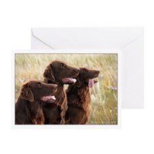 Flat-coated Retriever Greeting Card
