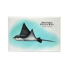 Spotted Eagle Ray Rectangle Magnet