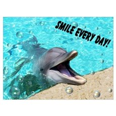 Smiling dolphin Canvas Art