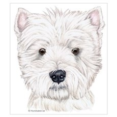 Westhighland White Terrier Poster