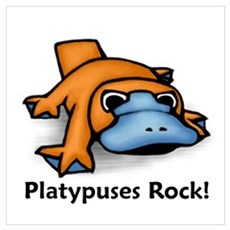 Platypuses Rock! Poster