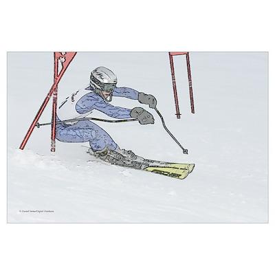 Skier 2835-018 Poster
