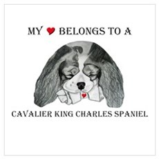My Heart Belongs To A CKCS Framed Print