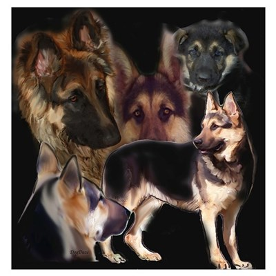 GSD collage Poster