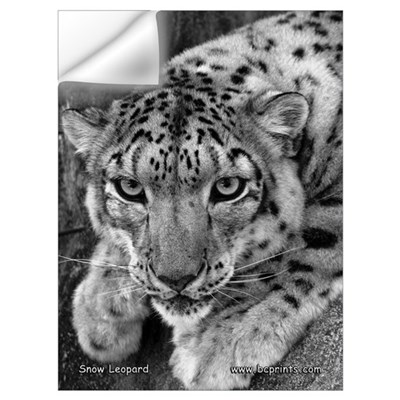 Snow Leopard 4 Wall Decal