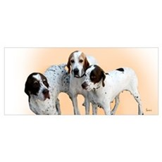 English Pointers Framed Print